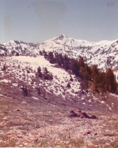 Utah Backcountry (1977) (Damaged Photo) by Mark D. Jones