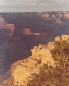 Grand Canyon #4 (1978)
