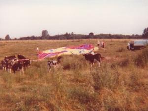 Hard Landing (1978)