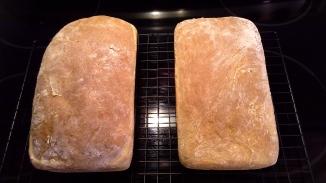 Amish White Bread - 2nd Batch