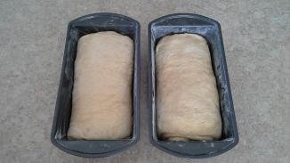 Milk and Honey Sandwich Bread